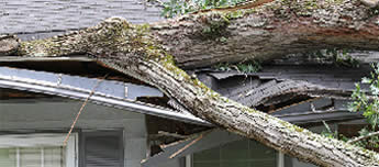 Storm damaged roofs require replacement fast. Smart roofing replaces roofs in denver.